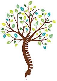 chiropractic tree
